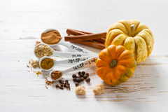 Selection of spices for christmas and thanksgiving. White wood background, copy space Royalty Free Stock Photo