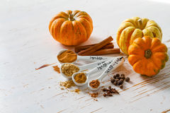 Selection of spices for christmas and thanksgiving. White wood background, copy space Stock Photography