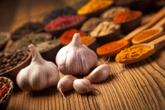 A selection of spices and garlic Royalty Free Stock Photo