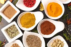 Selection of spices. Top view Stock Images