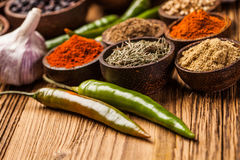 A selection of spices Stock Image