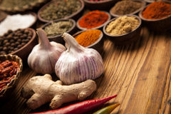 A selection of spices Stock Photography