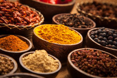 A selection of spices Royalty Free Stock Photo