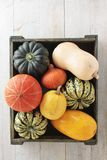 Selection of squash vegetables Royalty Free Stock Photos