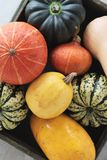Selection of squash vegetables Stock Photos