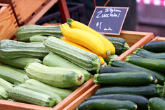 Selection of summer squash. Stock Images