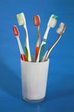 A selection of tooth brushes Stock Images