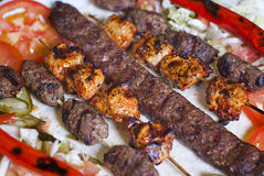 Selection of traditional turkish kebab Stock Images