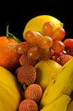 Selection of tropical fruits Stock Photography
