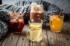 Set of 4 autumn drinks royalty free stock photo