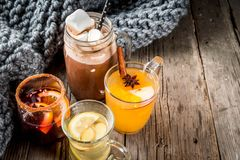 Set of 4 autumn drinks stock images