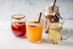 Set of 4 autumn drinks royalty free stock photos
