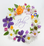 Selection of Various Flowers Isolated Royalty Free Stock Photography