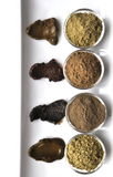 A selection of various natural henna & x28;Lawsonia inermis& x29; hair color dyes wet mixture  on white Stock Image