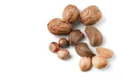 Selection of various nuts: almonds, Brazil nut, walnuts, hazelnu Royalty Free Stock Photo