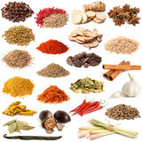 Selection of various spice Royalty Free Stock Images