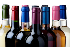 Selection wines Stock Images