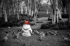 Selective Colour Photography Of Toddler Sitting On Grass Next to Pigeons Royalty Free Stock Photos