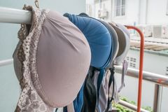 Selective focus of bra hanging on a clothesline Royalty Free Stock Photos
