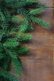 Selective focus branch of Christmas tree on wooden background Royalty Free Stock Photos