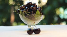 Selective focus from cherry to vase. Sweet cherry in a glass vase, fruit in a vase, stock video footage