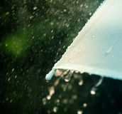 Selective focus for close up a part of umbrella which has Rain d Royalty Free Stock Photography