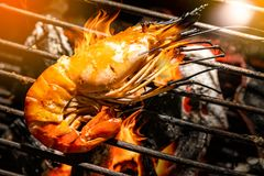 Selective Focus Delicious prawn spit on grill with flames in background.grilling shrimp on skewer on grill. royalty free stock photo