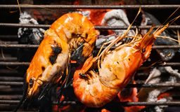 Selective Focus Delicious prawn spit on grill with flames in background.grilling shrimp on skewer on grill. stock image