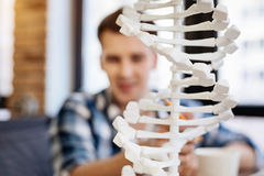 Selective focus of DNA model. Bulding bone. Selective focus of DNA model standing on the table while curious student looking at it while getting ready for stock photography