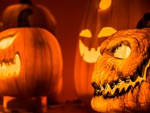 The selective focus on the face of the orange scary pumpkin with Royalty Free Stock Images