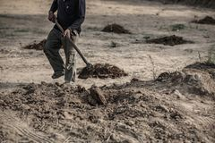 Selective focus , farmer dig soil to working royalty free stock images