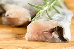 Selective focus on fresh raw hake fish with rosemary branches.  Royalty Free Stock Photos