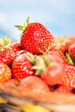 Selective focus on fresh red strawberry with blurred background. Selective focus on fresh red strawberry with blurred background Stock Photography