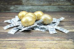 Selective focus golden eggs on artificial US dollars stock photo