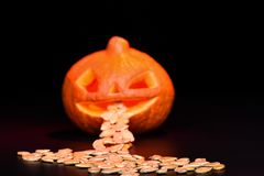 Selective focus. Halloween pumpkin eats pumpkin seeds isolated on a black background royalty free stock image