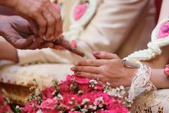 Selective focus on hands of bride and groom in water relaunch ceremony. Thai traditional wedding Royalty Free Stock Photography