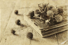 Selective focus image of dry flowers, antique necklace and old vintage books on wooden table. retro filtered image Stock Photo