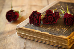 Selective focus image of dry red roses and old vintage books on wooden table. retro filtered image Royalty Free Stock Photo