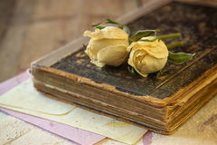 Selective focus image of dry rose and old vintage books on wooden table. retro filtered image Stock Image