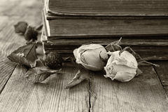 Selective focus image of dry rose and old vintage books on wooden table. retro filtered image Royalty Free Stock Photos
