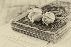 Selective focus image of dry rose and old vintage books on wooden table. retro filtered image Stock Images