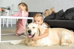 Selective focus of kid hugging golden retriever dog on floor while sister drawing picture. At home stock images