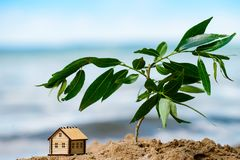 Selective focus on little house. Selective focus on little wooden house in the sand with branch of leaves. Symbol of home and movement royalty free stock image
