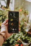 Selective Focus Photo of Black Samsung Galaxy Android Smartphone Displaying Yellow Petaled Flower royalty free stock photo