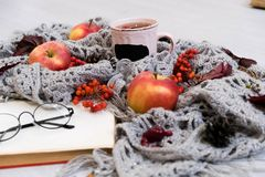 Selective focus photo of grey cozy knitted scarf with cup tea and open book old wooden table. red apples, leaves, berries, autumn Stock Image