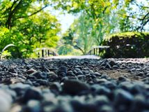 Selective Focus Photo of Stone Under Green Trees Royalty Free Stock Photos
