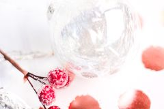 Selective Focus Photography of Frost Covered Red Cherries Stock Image