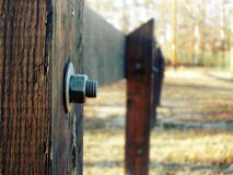 Selective Focus Photography of Grey Bolt Pierced in Brown Wooden Fence during Daytime Stock Image
