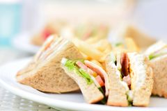 Selective Focus Photography of Plate of Sliced Clubhouse Sandwich Royalty Free Stock Photography