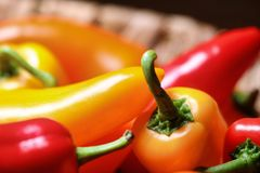 Selective Focus Photography of Red and Orange Chili stock photo